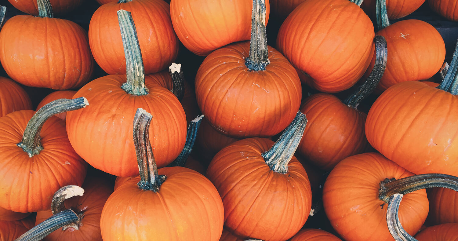 How to Have a Sustainable Halloween: Orange, Black & Green!