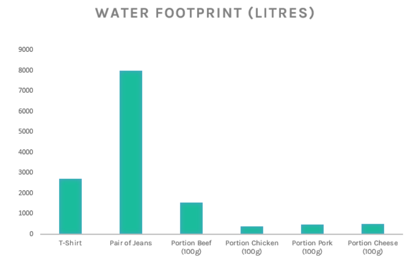 Water footprint clothing and meat industry